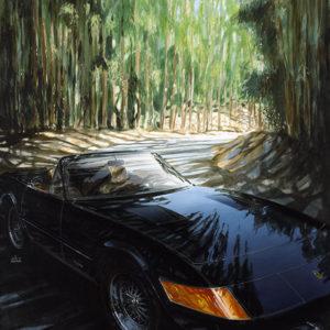Cannon Road - Jay Koka